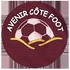 Avenir Côte Foot